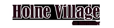 Holne village